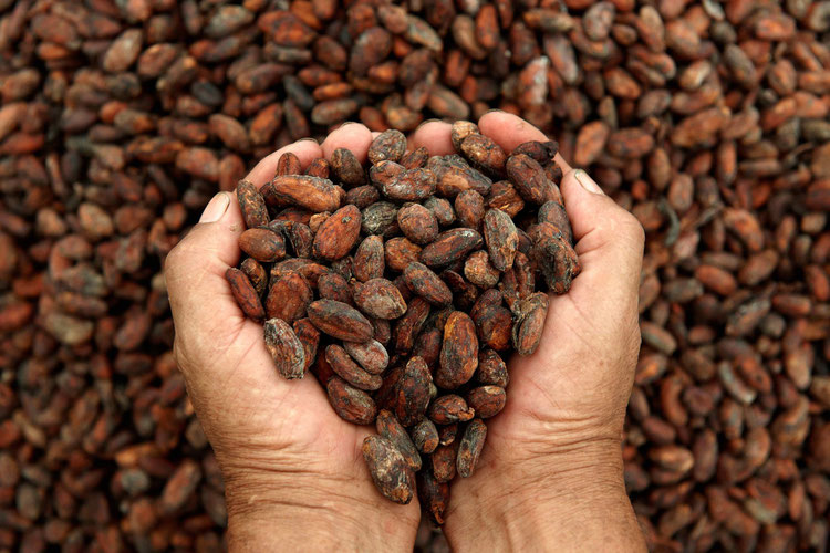 love cacao